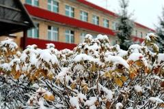winter_17