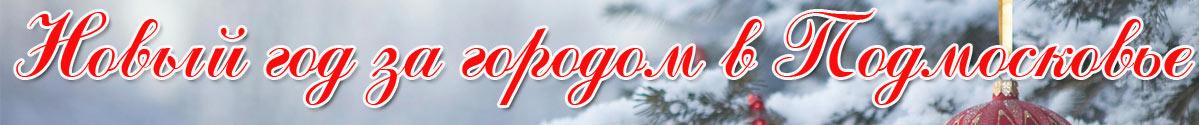 Новый год за городом в Подмосковье